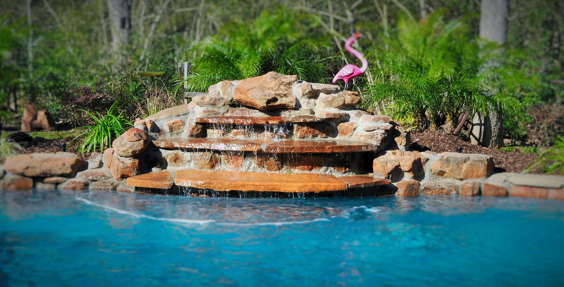 top pool design trends for your college station pool sunshine